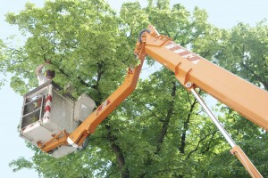 tree-triming-boom-truck-300x200